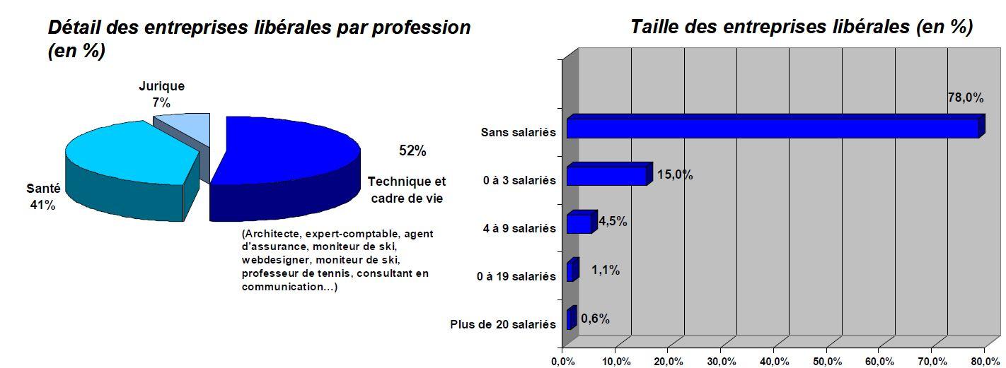 Détail des entreprises libérales par profession (en %)